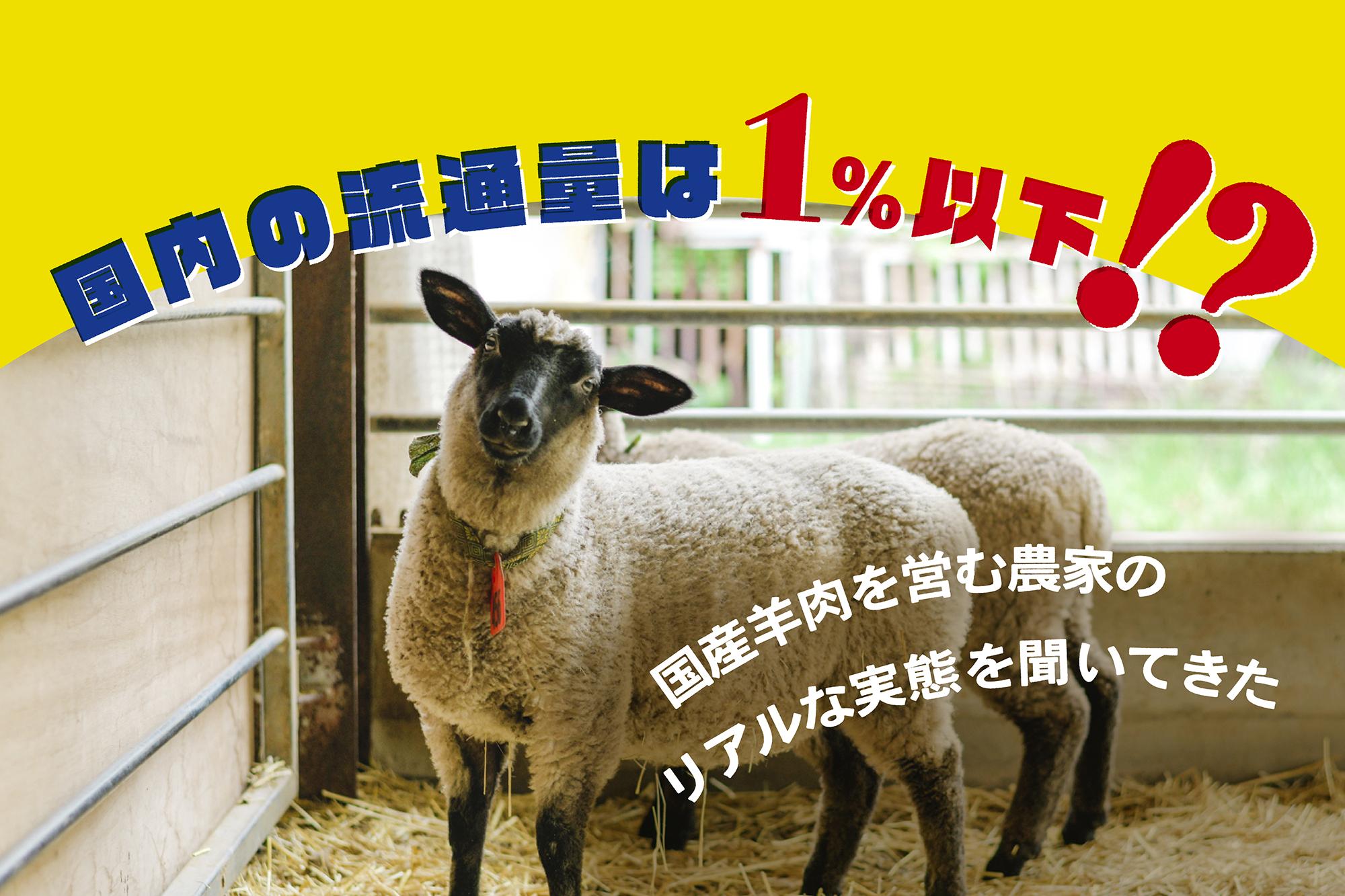 国内の流通量は1%以下!? 国産羊肉を営む農家のリアルな実態を聞いてきた